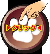 藤井聡の犬のしつけDVD